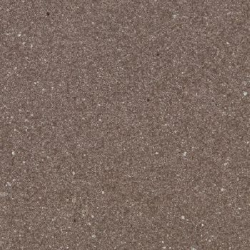 Orchid-Flat-Pavers1
