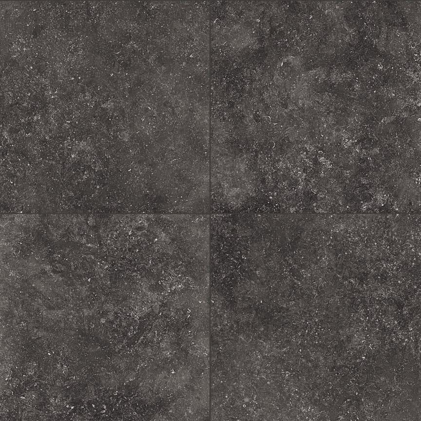 Seashell-Black-Four-900×900