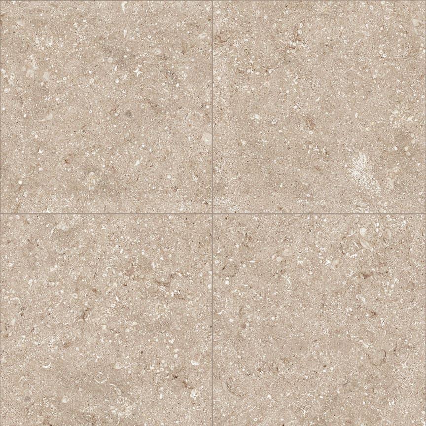 Seashell-Tan-Four-900×900
