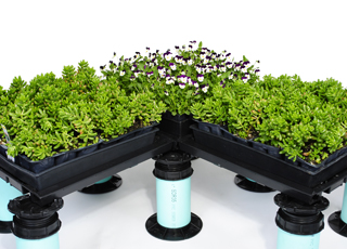 Green Roof Plant-Tray
