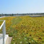 NantWorks-Rooftop-Amenity-Deck_07