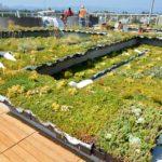 NantWorks-Rooftop-Amenity-Deck_09