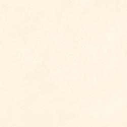 Trelis Clay - Poreclain Pavers