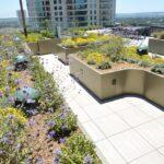 Century-Plaza_Rooftop-Turf-11